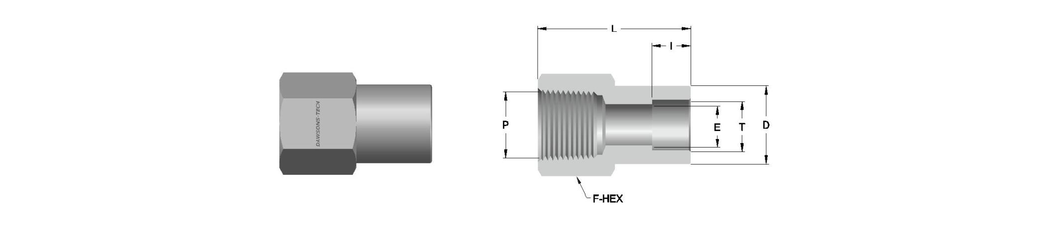 08 Tube Socket Weld Female Connector