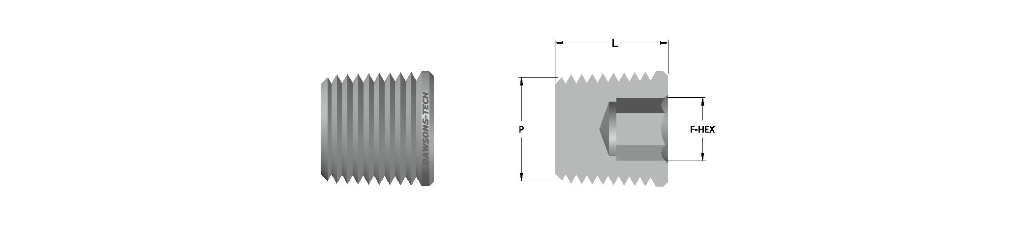 30 Hollow Hex Plug (NPT & BSPT) Threads